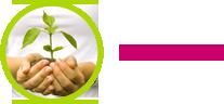 JOY International Donations and Sponsorships